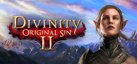 Divinity Original Sin 2 Game Free Download Torrent