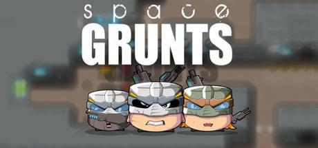 Space Grunts Game Free Download Torrent