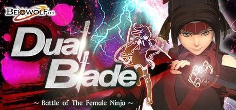Dual Blade Battle of The Female Ninja Game Free Download Torrent