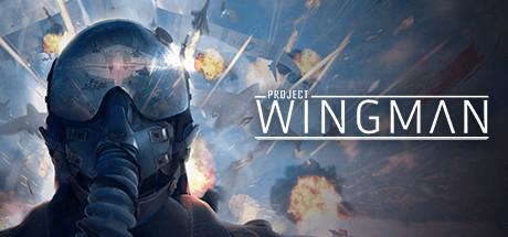 Project Wingman Game Free Download Torrent