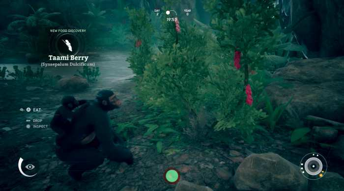 Ancestors The Humankind Odyssey Game Free Download Torrent